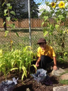 vsie_theo_gardening